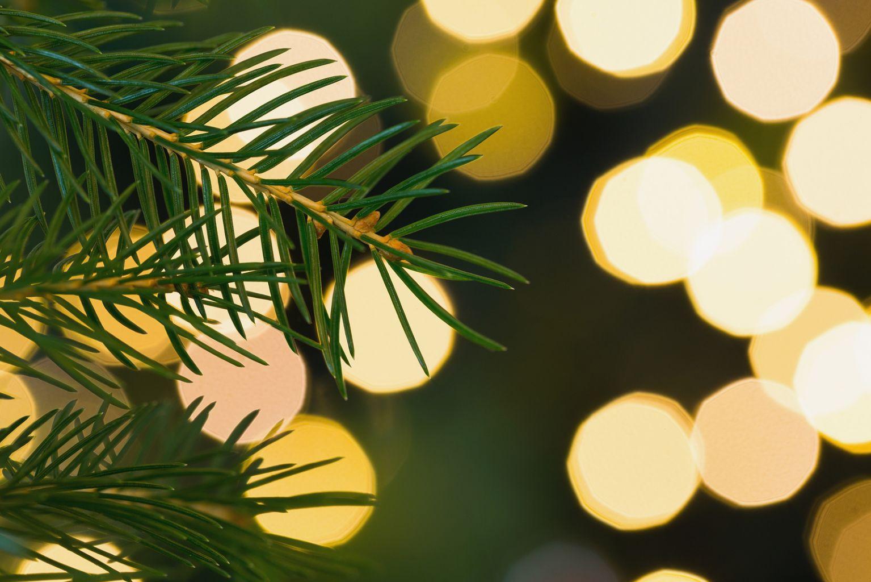 Outdoor Kerstverlichting Tomtriekertomtrieker